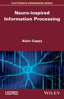 Neuro-inspired Information Processing
