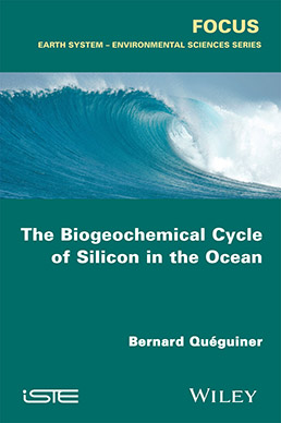 The Biogeochemical Cycle of Silicon in the Ocean