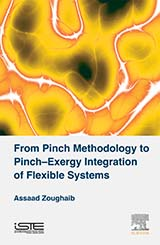From Pinch Methodology to Pinch-Exergy Integration of Flexible Systems