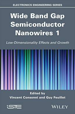 Wide Band Gap Semiconductor Nanowires for Optical Devices 1